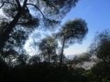 Nice, vue ouest du Mont Boron