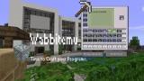 Wabbitemu, to craft programs.